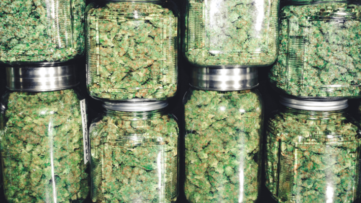 Which Online Dispensary is Best for New Users?