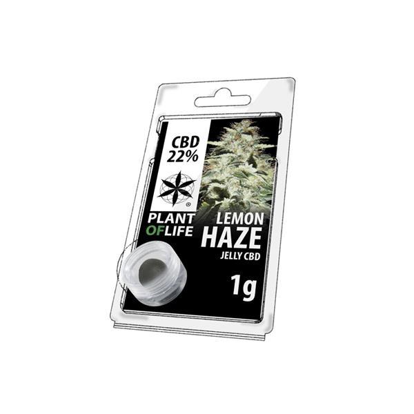 JWNBR0078X0213 525x525 - Plant Of Life Fruit Market Jelly 22% CBD 1g - Lemon Haze