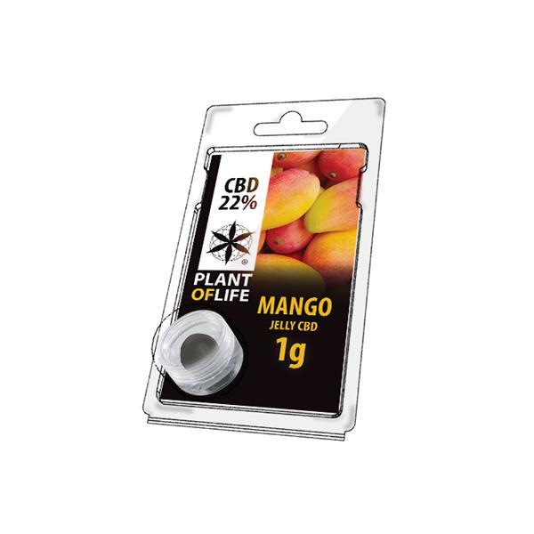 JWNBR0090X0213 525x525 - Plant Of Life Fruit Market Jelly 22% CBD 1g - Mango